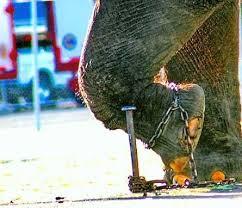 Rantai Gajah