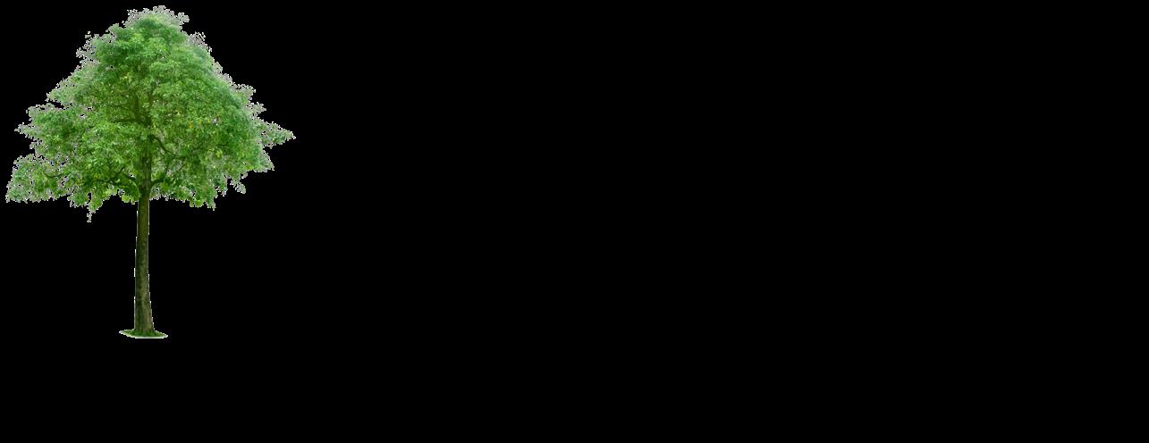 Darmawan Aji